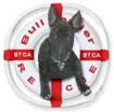Bull Terrier Club of America